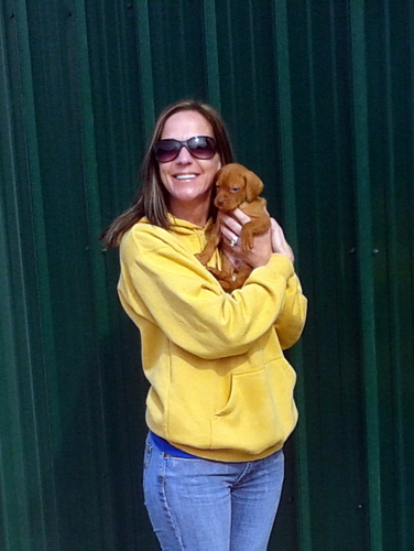 Nicole rifenburg have bought a vizsla pup, Murray